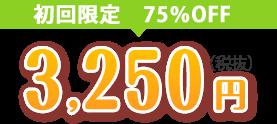 初回限定3250円(税抜)