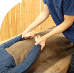 キネシオロジー・筋肉反射テスト
